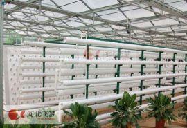 智能雾培水培控制系统,自动监测控制系统水肥一体化