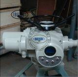 供应DZW20-24EZ整体型电动执行器