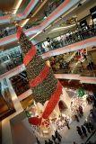 四川眉山松針聖誕樹 聖誕樹批發 小型聖誕樹 聖誕樹
