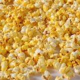 蓓芬PREFERRED/白金牌KTV 電影院爆米花專用玉米粒進口蝶形玉米