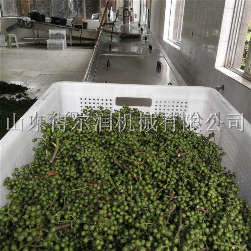 大凉山 保鲜花椒生产线 连续式花椒加工流水线品牌