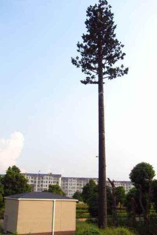 18米仿生松树避雷针塔,10米仿真椰子树通讯塔基站