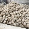 中档镁砂镁球含量94%-95% 碱性炉料镁碳砖专用料 辽宁海城产地批
