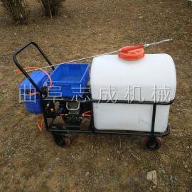 志成105L手推式电动喷雾器自动卷管大棚弥雾机