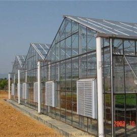 新型温室大棚骨架 玻璃连栋温室