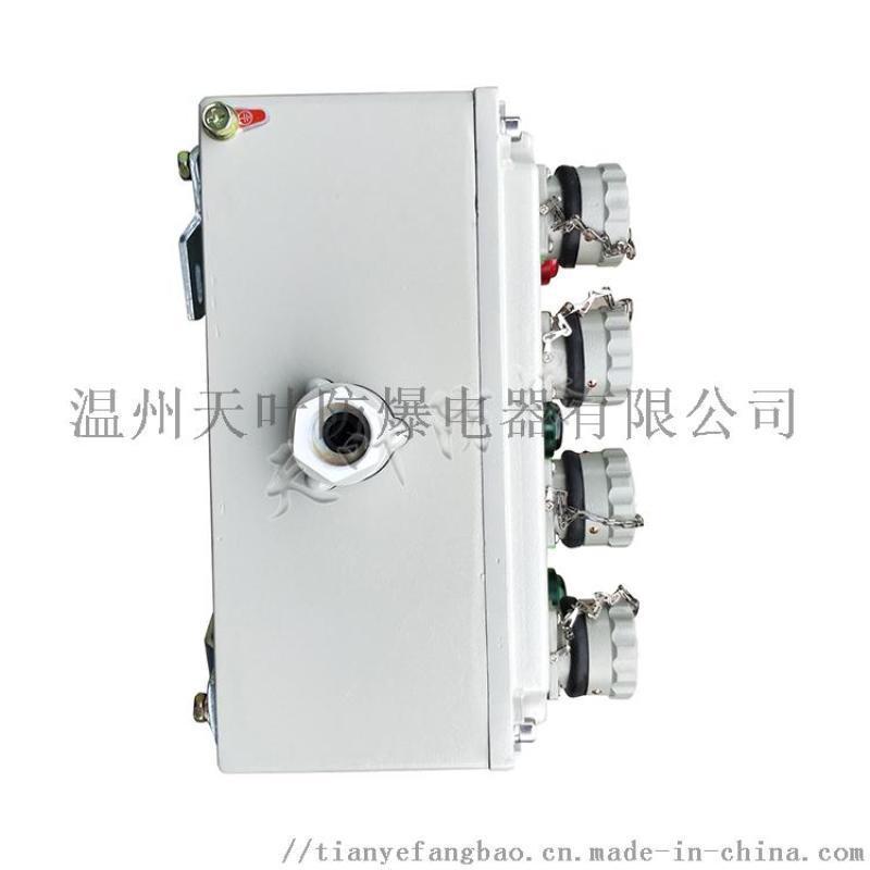 10C防爆照明动力配电箱
