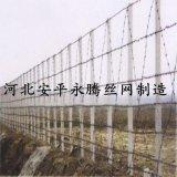 安平永腾丝网专业生产刺绳护栏 铁刺线 带刺防护网  刺绳立柱