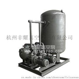 专业生产真空泵站/ZF系列真空泵站(ZF-1)