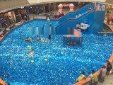室內海洋球池租賃 加厚海洋球直銷 海洋球廠家