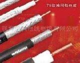 同轴电缆(SYWV-75)