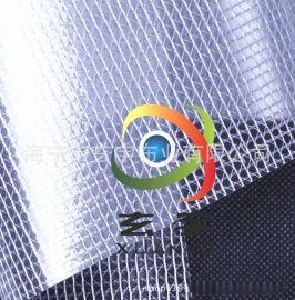 现货供应0.3厚度PVC透明夹网布 网格布