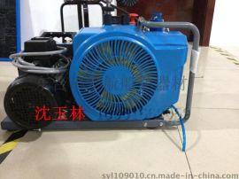 加拿大原则进口便携式潜水运动用压缩机呼吸器充气泵