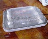 海洋王NFC9175长寿顶灯 40W无极灯