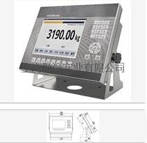 XK3190 -DS9耀华数字显示仪表