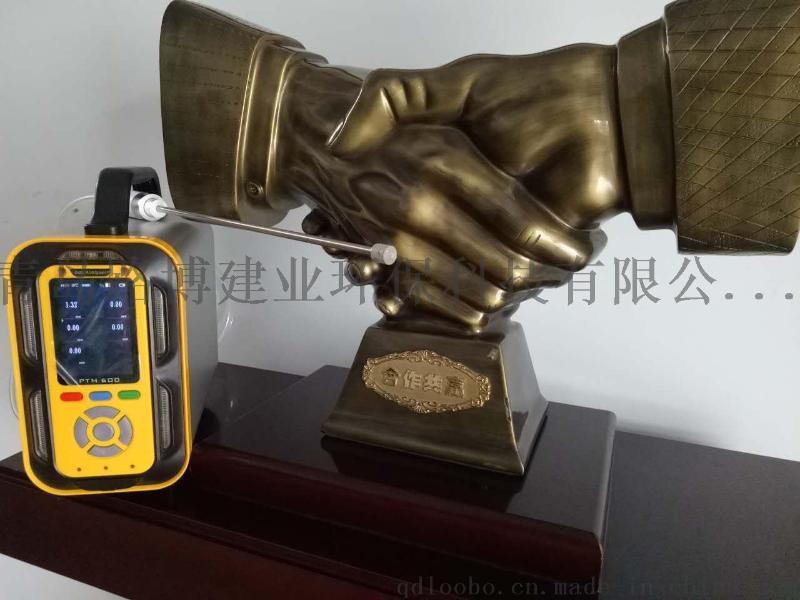 适合环保检测机构的便携式多气  测仪一机多用