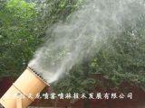 喷雾除尘雾炮车 雾炮车行业专业供应商 信天龙造雾