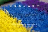 幼儿园彩虹跑道,彩色人造草坪