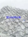 PE/PA塑料絲網生產設備