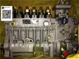 重庆康明斯3977539燃油泵康明斯6BT发动机