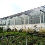 连动温室大棚制造建设厂家选择青州锦坤温室工程