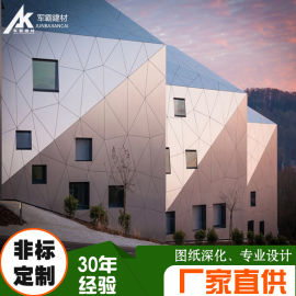 氟碳鋁單板 異形氟碳鋁單板廠家  造型鋁單板