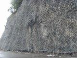 邊坡被動防護網