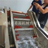 2020源頭廠貨 不鏽鋼草莓氣泡清洗機 春季熱銷中
