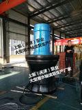 防汛排澇泵站軸流式潛水泵