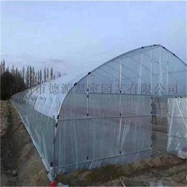 日光温室大棚 薄膜蔬菜温室 温室厂家