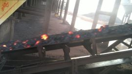 耐烧灼耐热输送带/耐高温输送带/EP帆布150