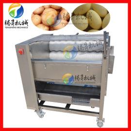 优质不锈钢毛辊清洗机 商用萝卜土豆清洗机 厂家现货供应