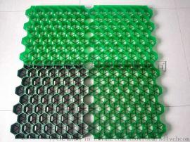 塑料植草格厂家现货供应