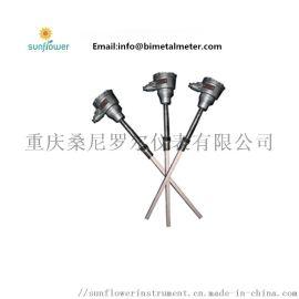 WRBKT12-232DD B型双支铠装铂铑热电偶