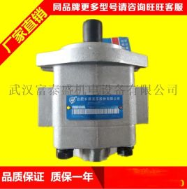 合肥长源液压齿轮泵叉车配件批发 北京现代 齿轮泵CBHZA-F32-AFH6L-AT 叉车齿轮油泵