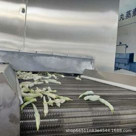 王氏 AFS全流态化速冻装置 黄桃隧道式速冻机 罐头加工前处理设备
