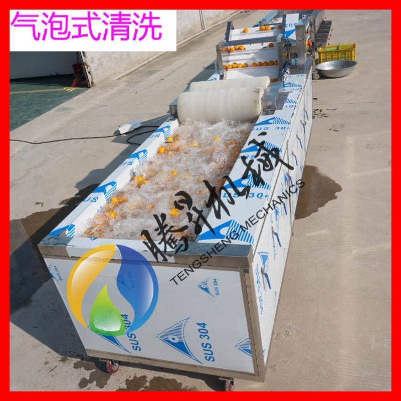 不鏽鋼滾桶滾槓式選果機  可接流水線