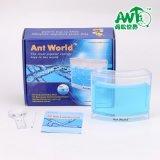 新奇玩具生态玩具蚂蚁世界蚂蚁挖洞玩具