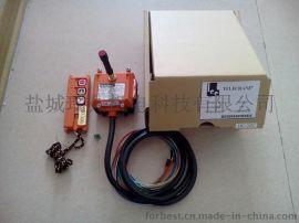 升降机/输送机无线遥控器(F21-2S)