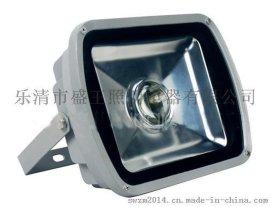 LED投射灯PN-101C-70W
