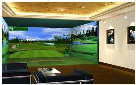 模拟高尔夫技术设备最优组合方案