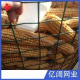 【铁丝网】圈地鸡鸭养殖铁丝网 平纹荷兰编织场地隔离防护铁丝网
