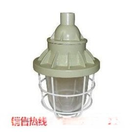 BAD51隔爆型防爆灯/防爆灯70W吊杆安装