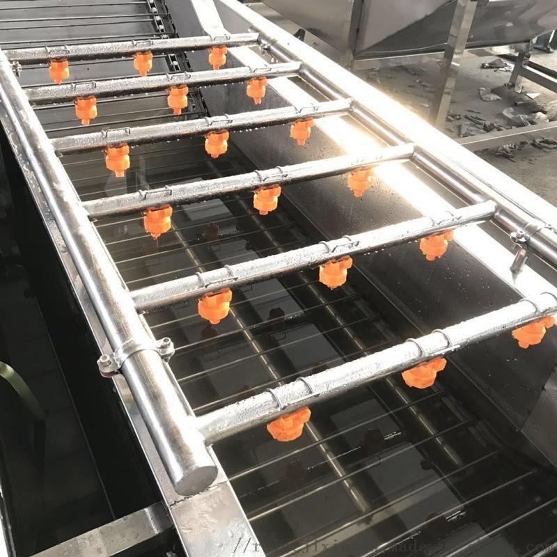 东北玉米清洗漂烫机  玉米清洗漂烫风干机