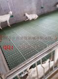 山东羊床 羊场专用漏粪板 双筋加厚羊地板