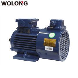 WOLONG/卧龙BPY系列变频调速三相异步電動機