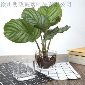 客廳水培植物容器玻璃瓶小清新幹花插花擺件透明花器裝飾品花瓶