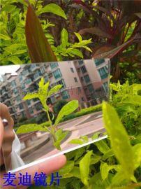 原材料厂家生产 亚克力镜片 pc镜片