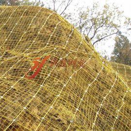塗塑主動防護網,PVC包塑主動防護網,塗塑防護網