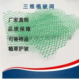 护坡用三维植被网 绿化效果好可重复利用三维植被网