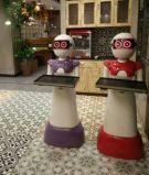 对 你没有听错     可以送餐的机器人   山东卡特机器人